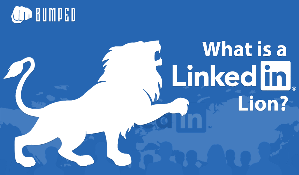 What is a LinkedIn Lion?