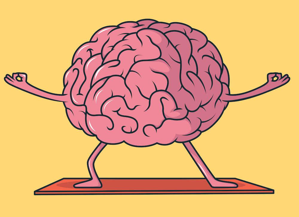 Brain's Flexibility