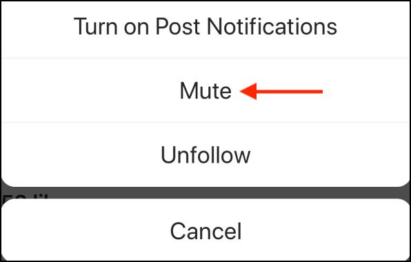 Instagram Mute notifications