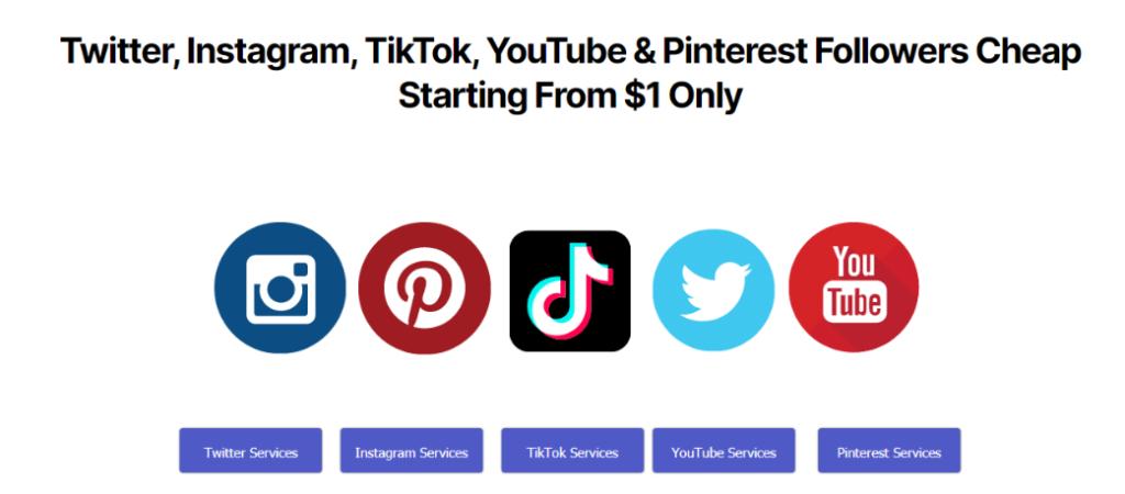 Tweetnfollow Services