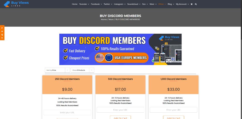 BuyViews Discord Members