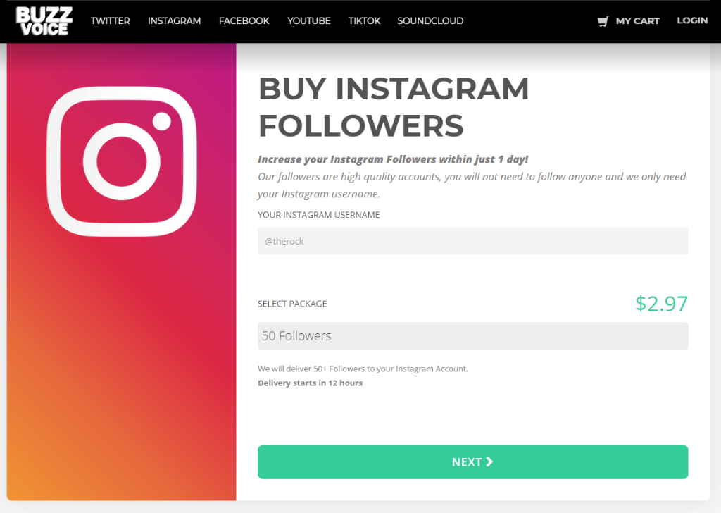 BuzzVoice Instagram Followers