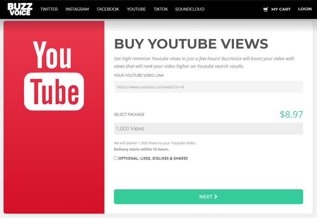BuzzVoice YouTube Views